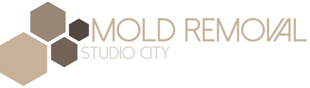 Mold Removal Studio City